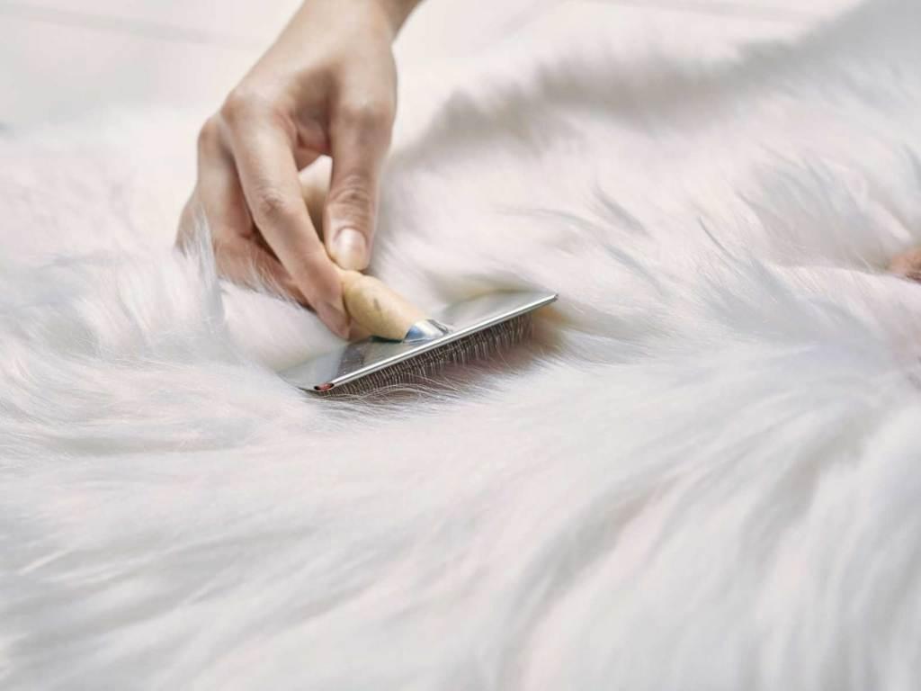 giặt khô áo lông tại nhà như thế nào